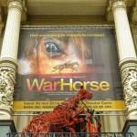 War Horse 2014